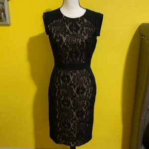 Adrianna Papell Lace Detail Dress